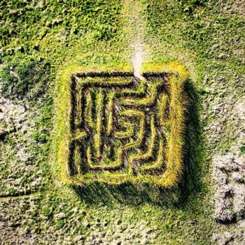 Hambrook Marshe Maze